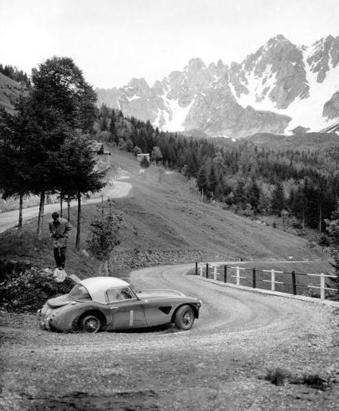 Name:  AH 3000 #75 Works 67ARX 1962 Coupe des Alpes .jpg Views: 226 Size:  48.6 KB