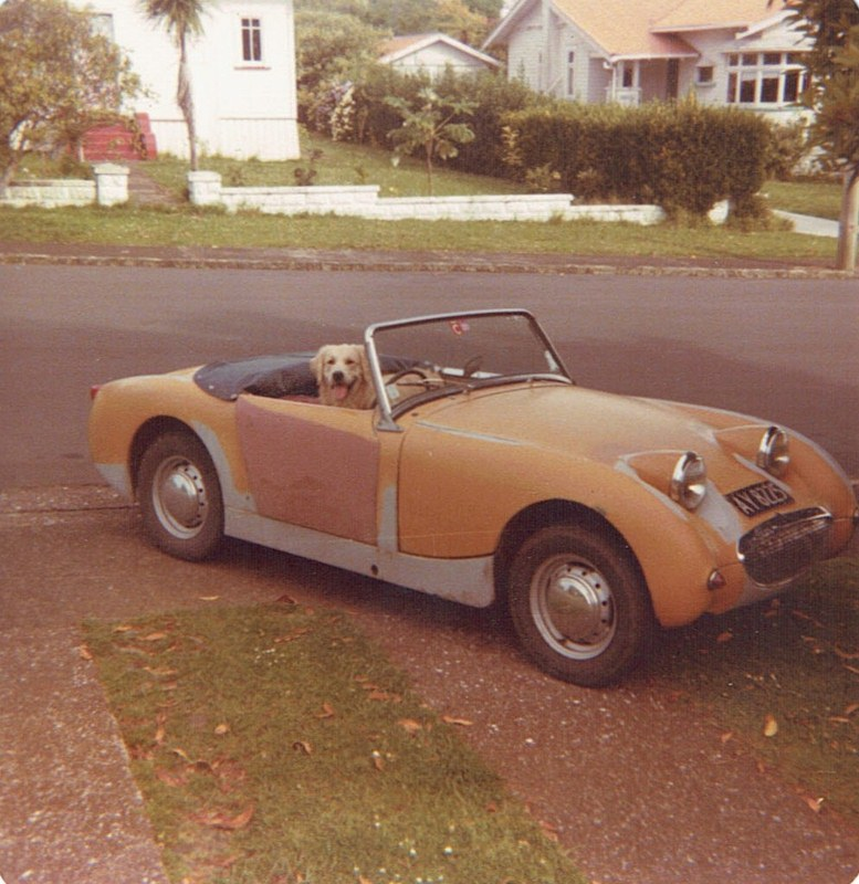 Name:  My cars #183 1960 A-H Sprite & Sam Mt Albert 1981 CCI09022016_0007 (777x800) (2).jpg