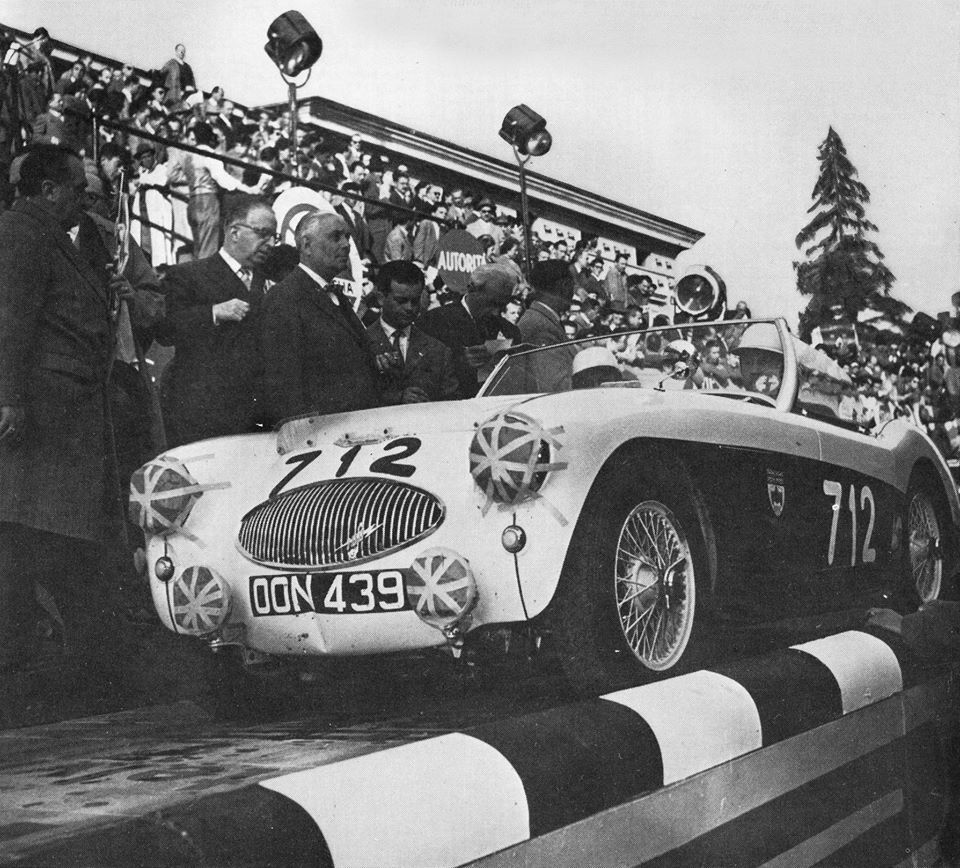 Name:  AH 100S #149 OON439 Donald Healey 1955 Miglia Miglia.jpg Views: 37 Size:  160.3 KB