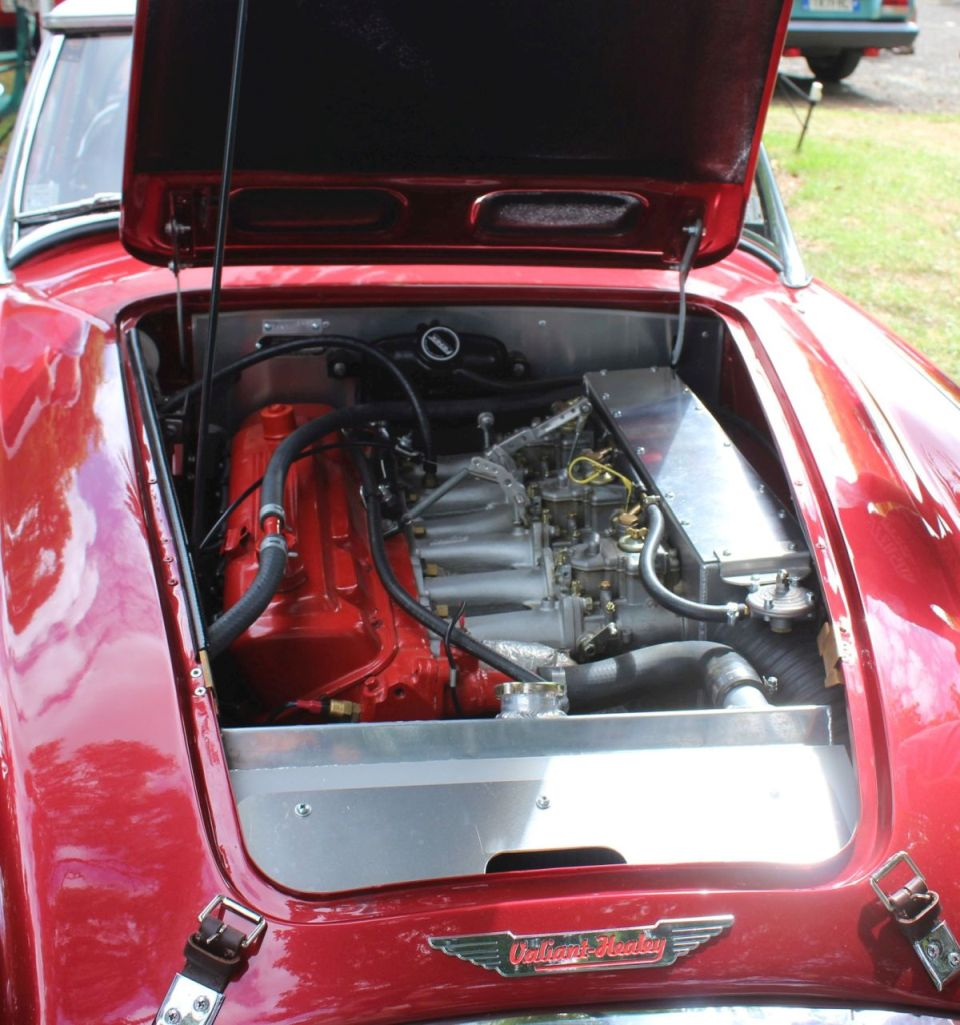Name:  AH 3000 #106 Valiant Healey 2019 -engine Milan Fistonic.jpg