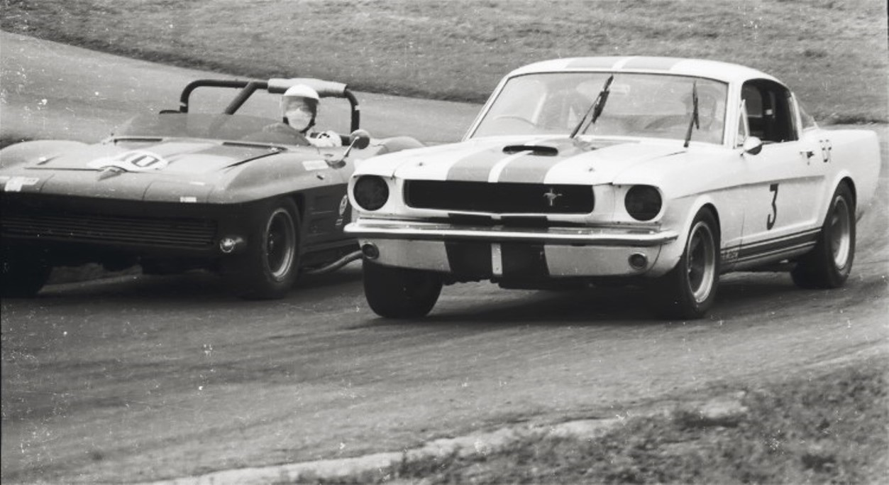 Name:  SHELBY GT 350 and STINGRAY 9 (1).jpg