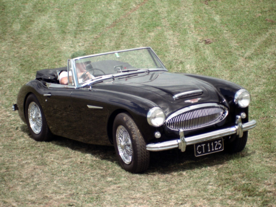 Name:  189_0304_004 Healey.jpg