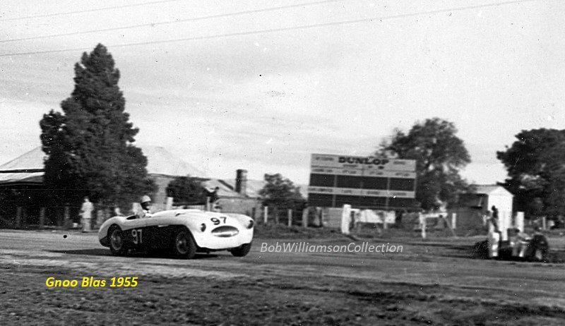 Name:  AH 100S #16 AHS3701 David Smith Gnoo Blass 1955 Bob Williamson.jpg Views: 780 Size:  65.2 KB