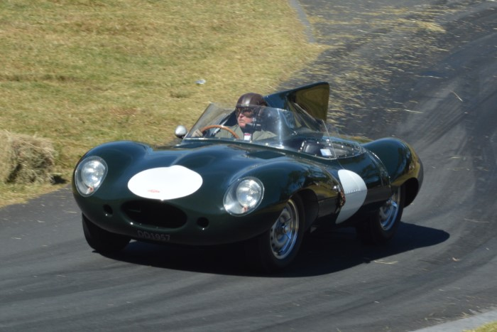 Name:  217_0205_172 Jaguar r.JPG