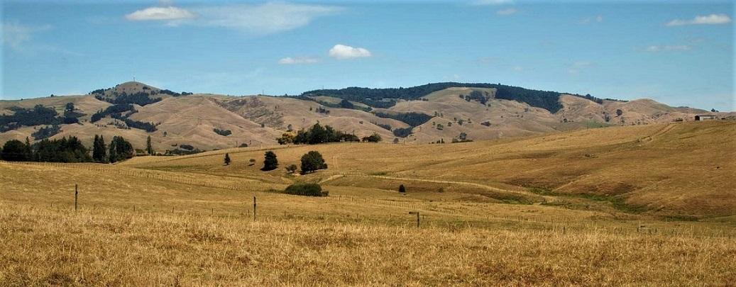 Name:  Te Miro hills Scotsman's valley.jpg Views: 57 Size:  195.1 KB